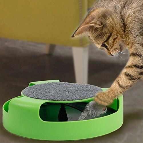 Juguete de atrapar al ratón para gatos | Luladu