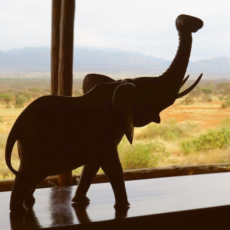 El elefante de la suerte, qué es y cómo ayuda según el feng shui a mejorar de tu casa
